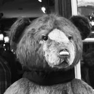 Teddy Bear Tea Room